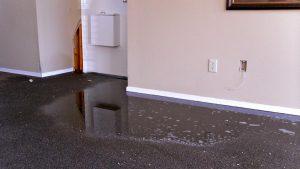 Flood Damage Restoration Melbourne